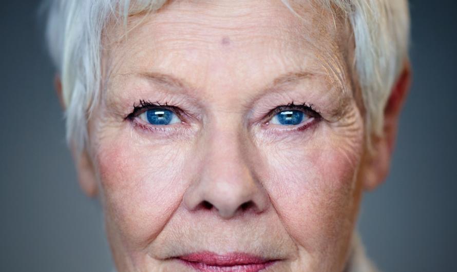 Dame Judi Dench Becomes Arts Alive Patron