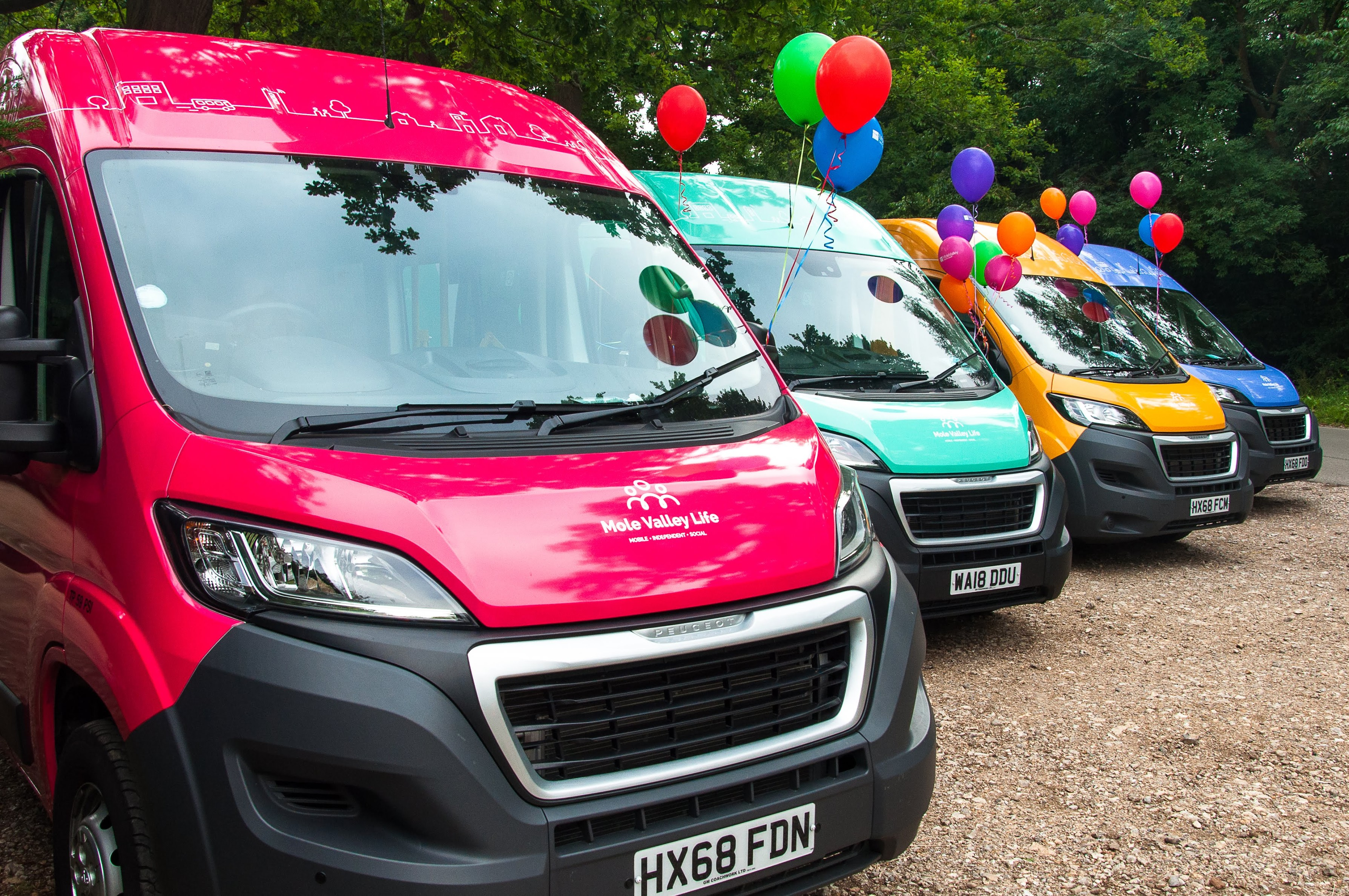 Mole Valley Life buses parked at Box Hill car park with balloons