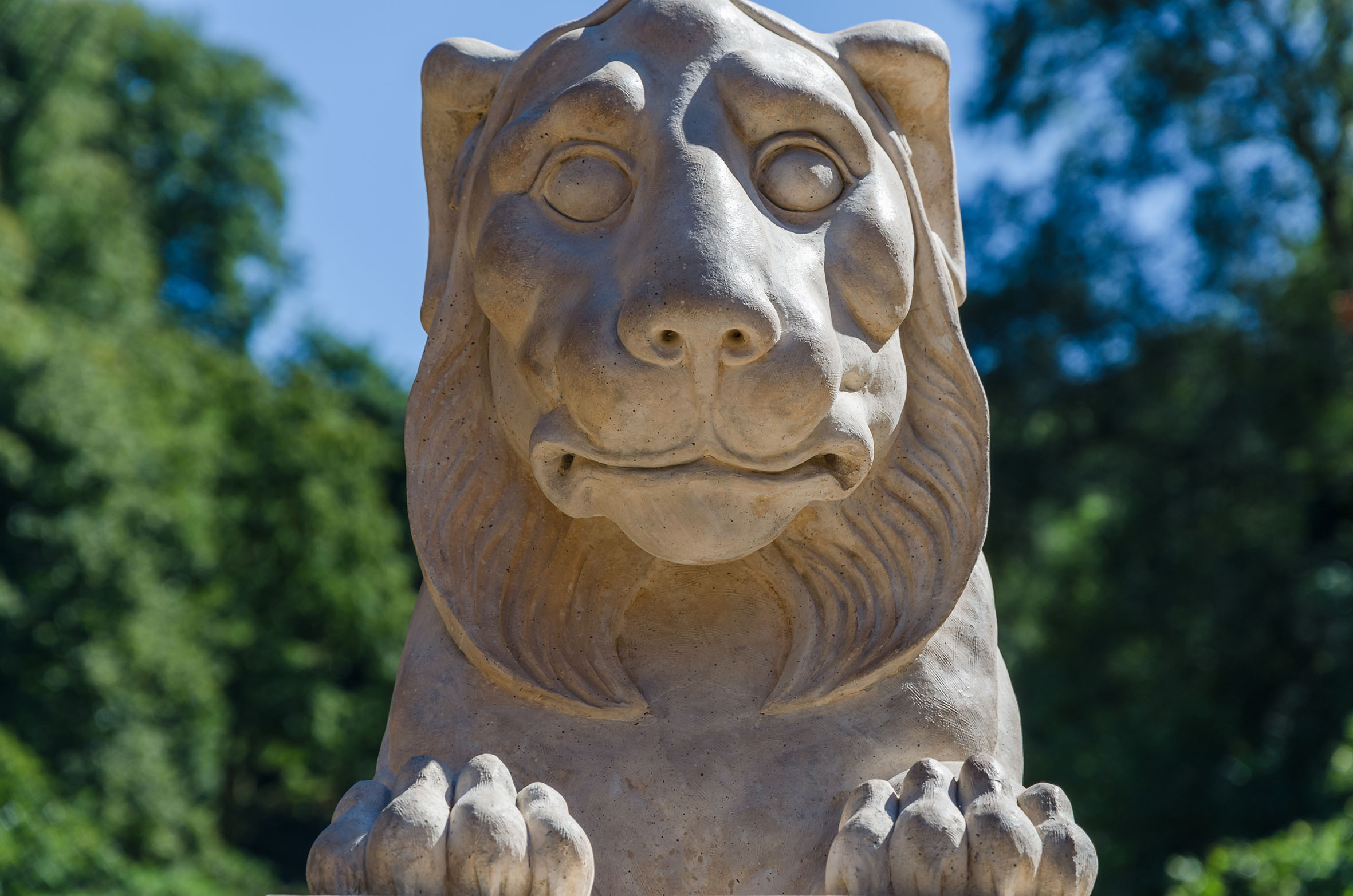 Coady the lion statue at Deepdene