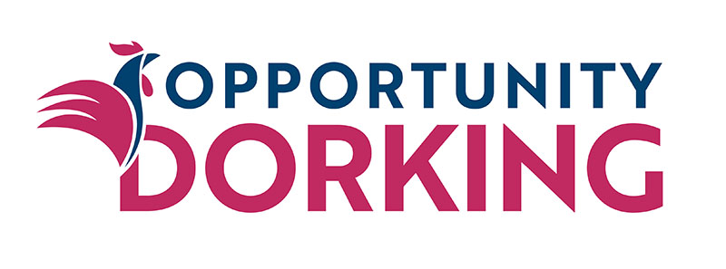 Opportunity Dorking Initiative & Business Support Successes