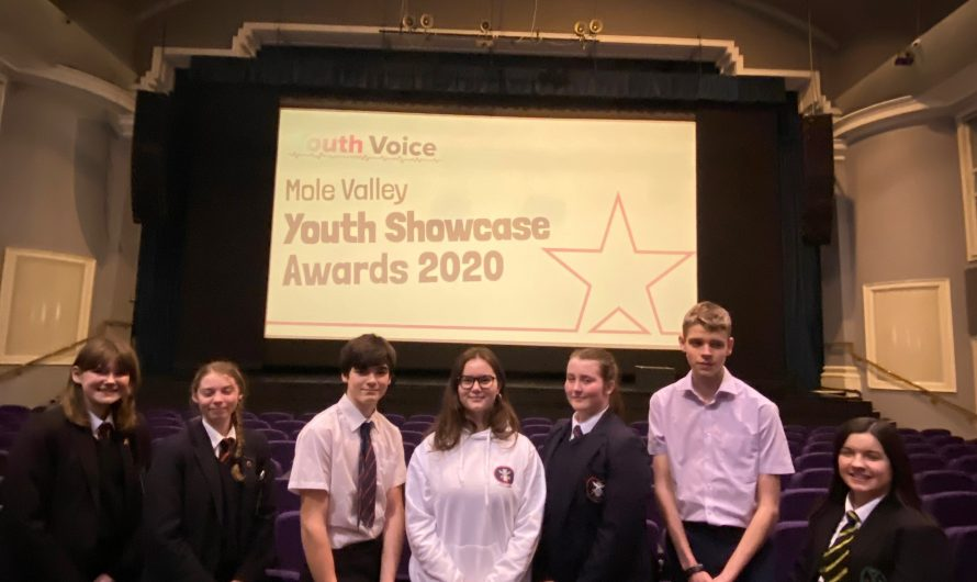 Mole Valley's First Ever Virtual Youth Showcase Awards