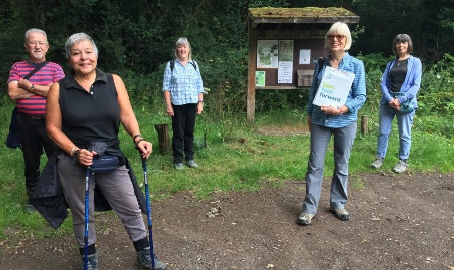 Mole Valley's Healthy Walks Return
